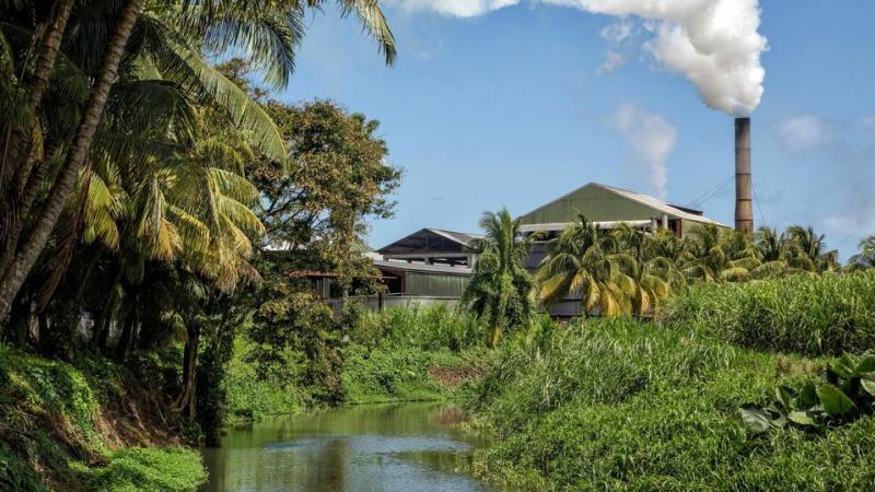 Existe-t-il des traces de chlordécone dans le rhum agricole produit en Martinique, Guadeloupe et Marie-Galante ?