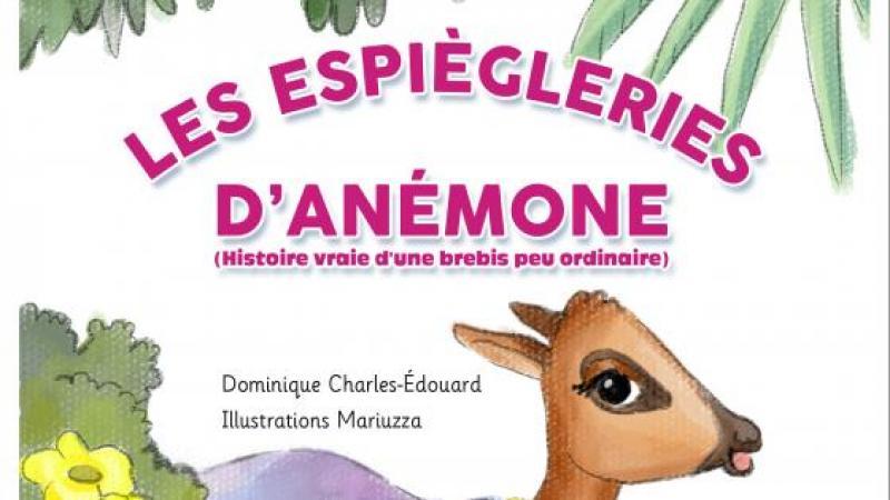"""""""LES ESPIÈGLERIES D'ANÉMONE"""""""