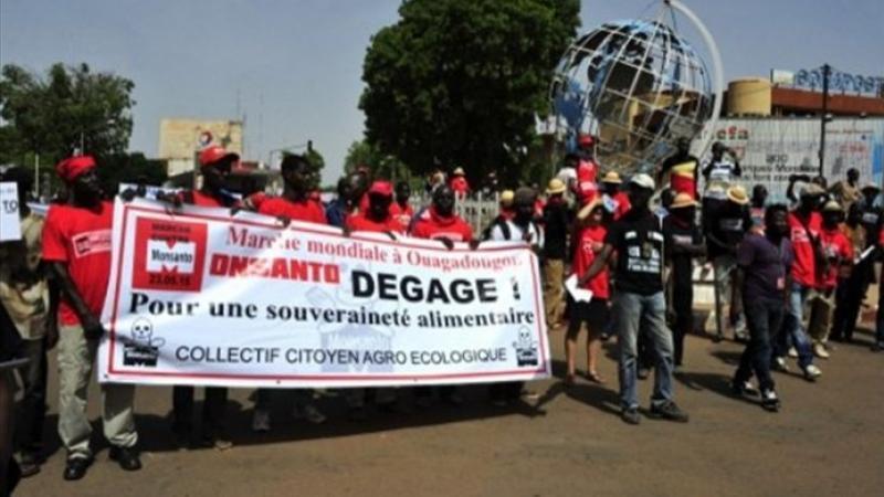 Le Burkina Faso dit « Non » au coton OGM de Monsanto et fait une super récolte