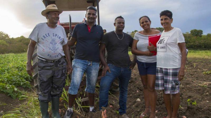 Guadeloupe: l'agriculture tente de reconquérir l'assiette de ses habitants