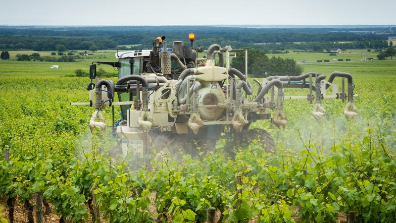 Évecquemont : l'arrêté anti-pesticide du maire suspendu