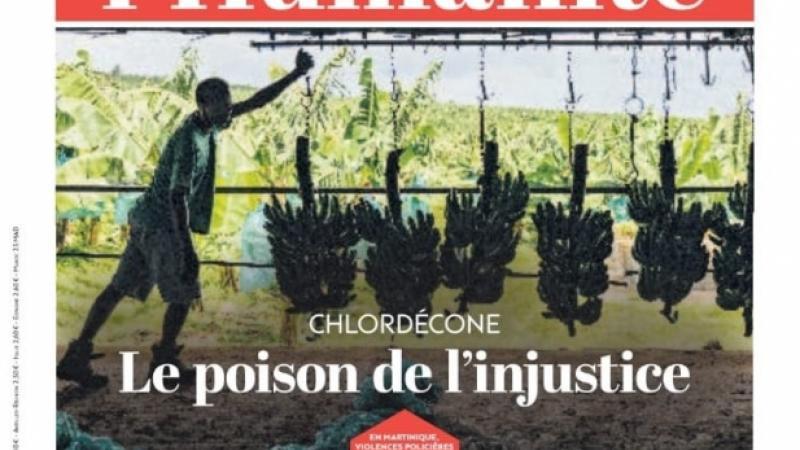 Chlordécone : la mémoire courte des Martiniquais