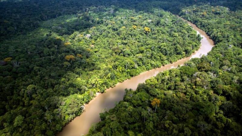 En Guyane, le combat contre les mines d'or industrielles continue