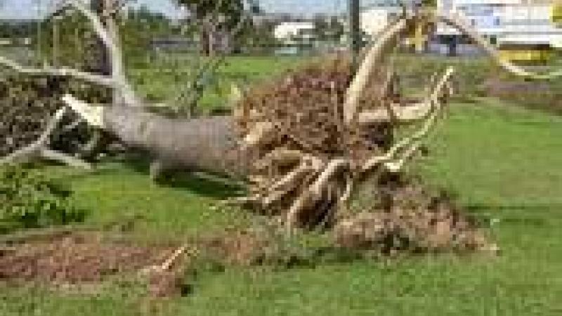 CYCLONE DEAN : DU MEPRIS DES VOISINS CARIBEENS AU CARNAVAL COMPASSIONNEL
