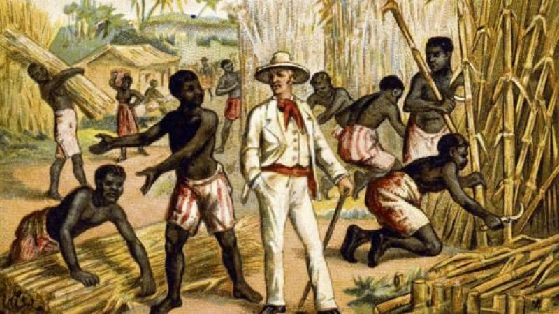 Sur les traces du commerce triangulaire. Martinique, terre de castes. Les descendants des colons sont restés les maîtres. Dans les affaires et dans les têtes.