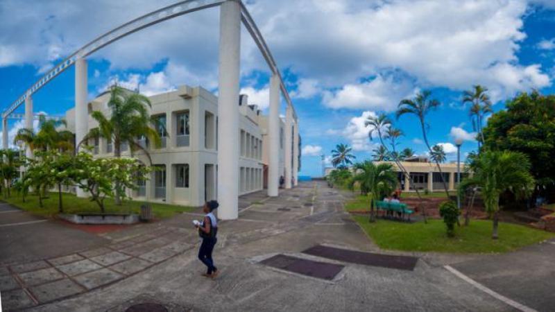 La Martinique aura-t-elle son université à l'insu de son plein gré ?