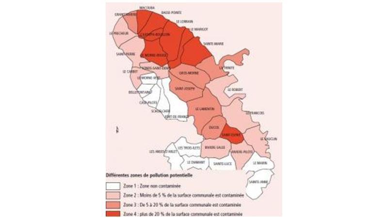 CHLORDÉCONE en Martinique : Une augmentation avérée du risque de myélome