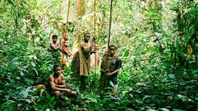 DANS LE BASSIN DU CONGO, LES PYGMEES VICTIMES DES ONG ENVIRONNEMENTALES