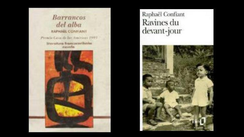 Una mirada revolucionaria sobre la violencia en la literatura de las Antillas francesas