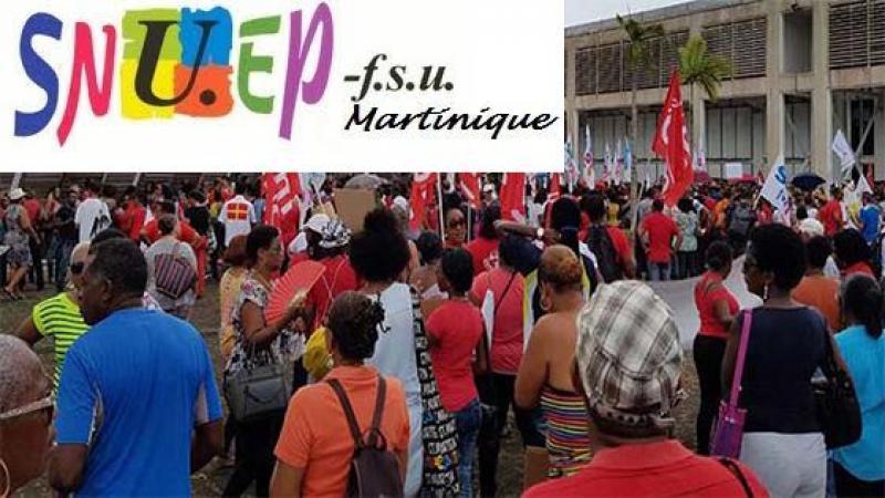 COMMUNIQUE DE PRESSE DU SNUEP-FSU Martinique