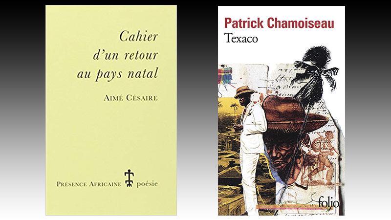 2 Martiniquais dans la liste des 50 meilleurs livres écrits en français de 1900 à nos jours
