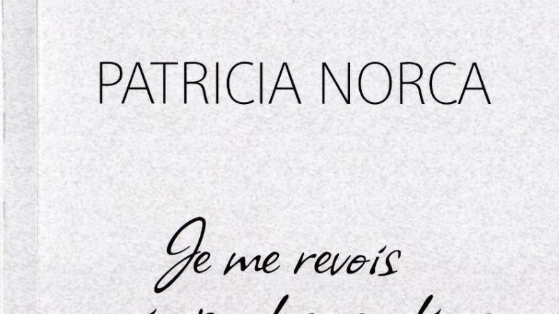 Partir !  Ou  Je me revois grimper les escaliers, un roman de Patricia Norca