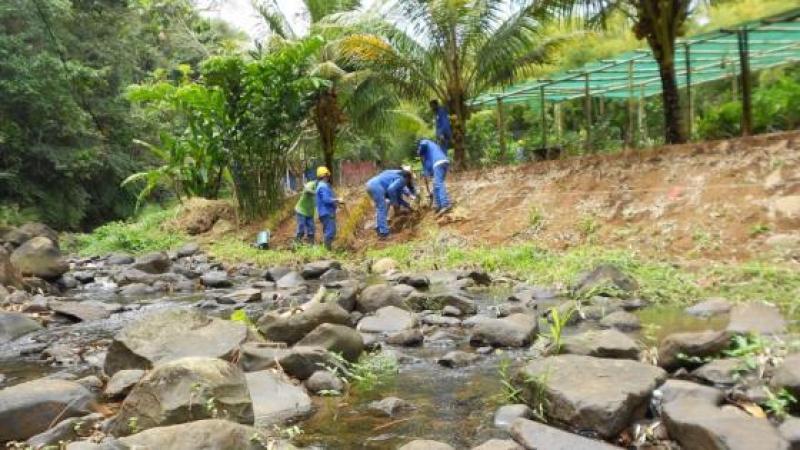 Parc Naturel de la Martinique : d'inadmissibles pressions sur des jeunes en ACI (Atelier Chantier d'Insertion)