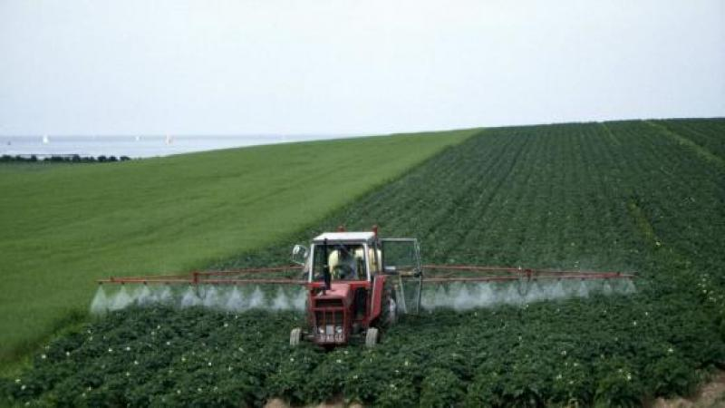 CANCER : TROIS PESTICIDES SUR LA SELLETTE