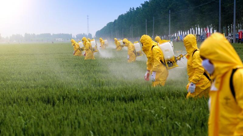DEUX EXPERTS DE L'ONU RÉCLAMENT L'ABOLITION DE L'AGRICULTURE INDUSTRIELLE