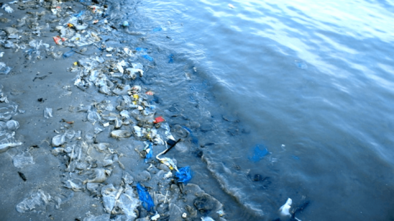 THESE 5 COUNTRIES ACCOUNT FOR 60% OF PLASTIC POLLUTION IN OCEANS