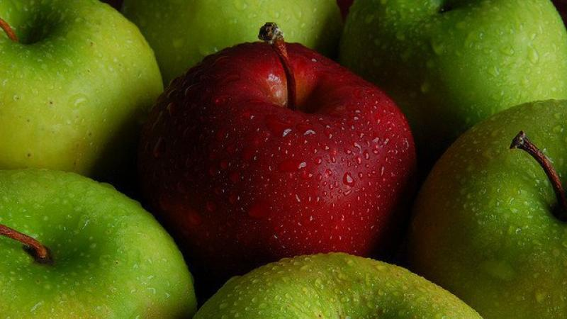 Les pommes françaises sont bien empoisonnées aux pesticides, la justice donne raison à Greenpeace