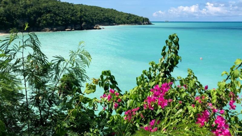 Antigua-et-Barbuda lance des webinaires interactifs pour les agents canadiens