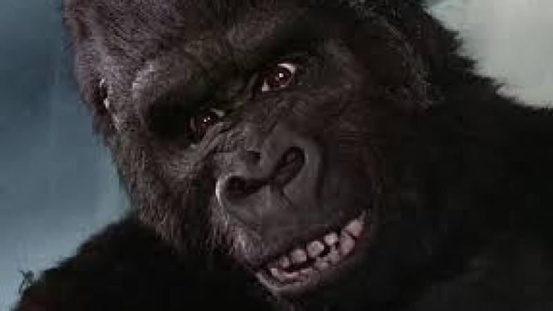 """Du """"King Kong"""" d'Aimé Césaire au """"bras d'honneur"""" d'Alfred Marie-Jeanne"""