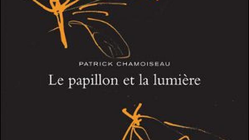 LE PAPILLON ET LA LUMIERE: DISPONIBLE EN LIBRAIRIE