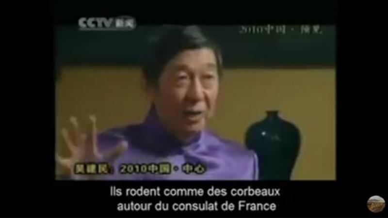 AFRIQUE FRANCOPHONE : QUAND LA VERITE SORT DE LA BOUCHE D'UN Pr CHINOIS