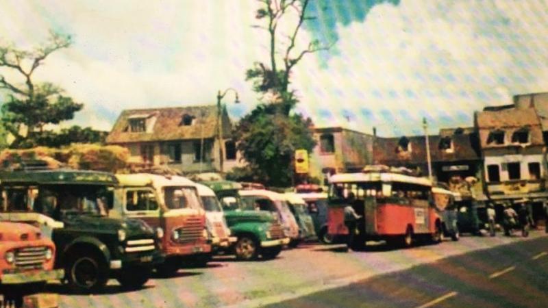 Martinique 1950 - 2020 : de la démographie galopante à la dépopulation massive
