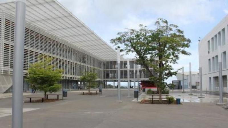 Nomination d'un « Gréviste professionnel » comme administrateur provisoire du pôle Guadeloupe