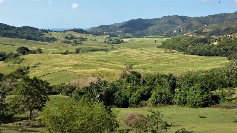 Le projet de golf à Grand Fond (commune du Marin), remis sur la table