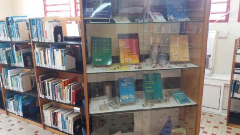 Bibliyotek Chelchè : Jounen kréyol toutwon latè