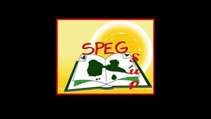 Communiqué du SPEG sur la question des emplois à l'Université des Antilles