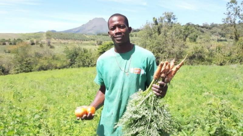 CARBET : SAMUEL CESTOR, POUR UNE AGRICULTURE SAINE ET NOURRICIÈRE !