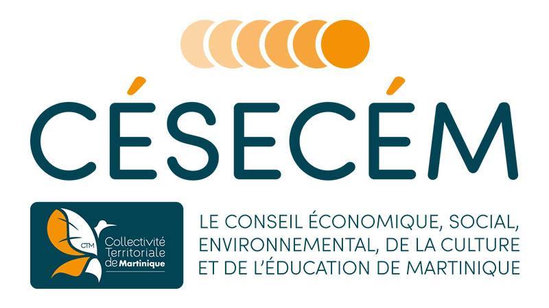 Le CESECEM : soutien sans faille aux journalistes